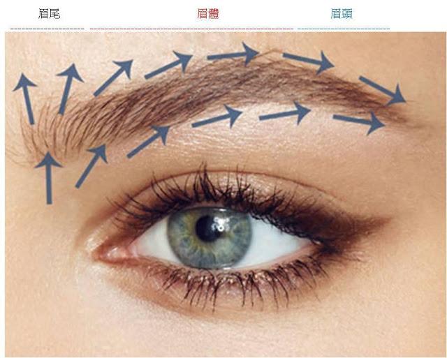 植眉手術髮流分析